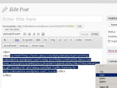 Copy Script HTML dari Site Info