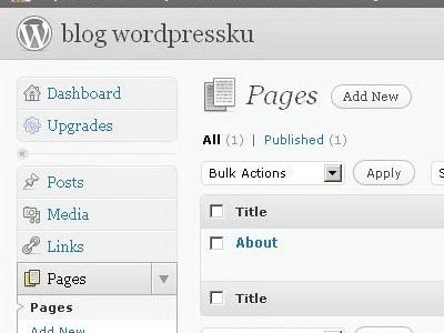 Mengatur Page pada BLOG