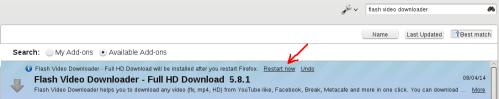 add-on-flv02